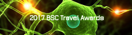 2017-bsc-travel-awards